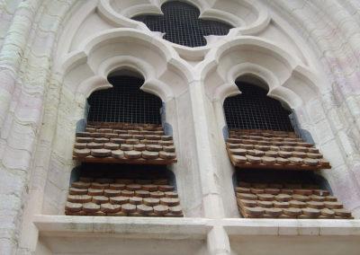 Cathédrale Saint Bénigne DIJON (21)